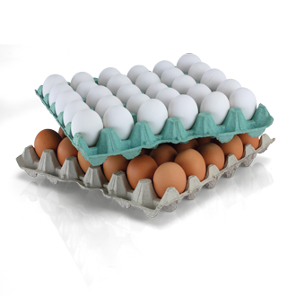 Universal Egg Trays