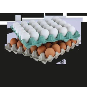 Кори за яйца  УНИВЕРСАЛ
