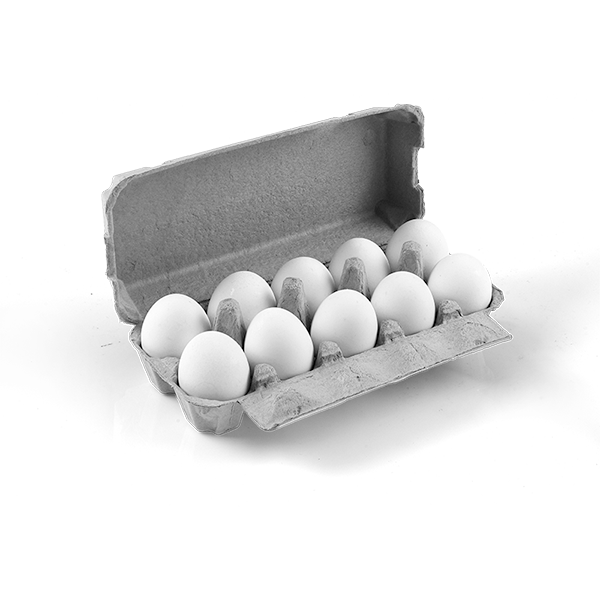 Egg Boxes  FLATTOP 10