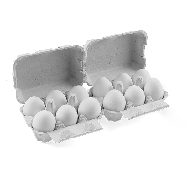 Egg Boxes FLATTOP 6