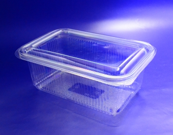 Food Containers with Hinged Lids