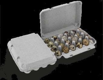 Кутии за пъдпъдъчи яйца - 500 бр.